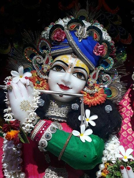 Krishna Related Books